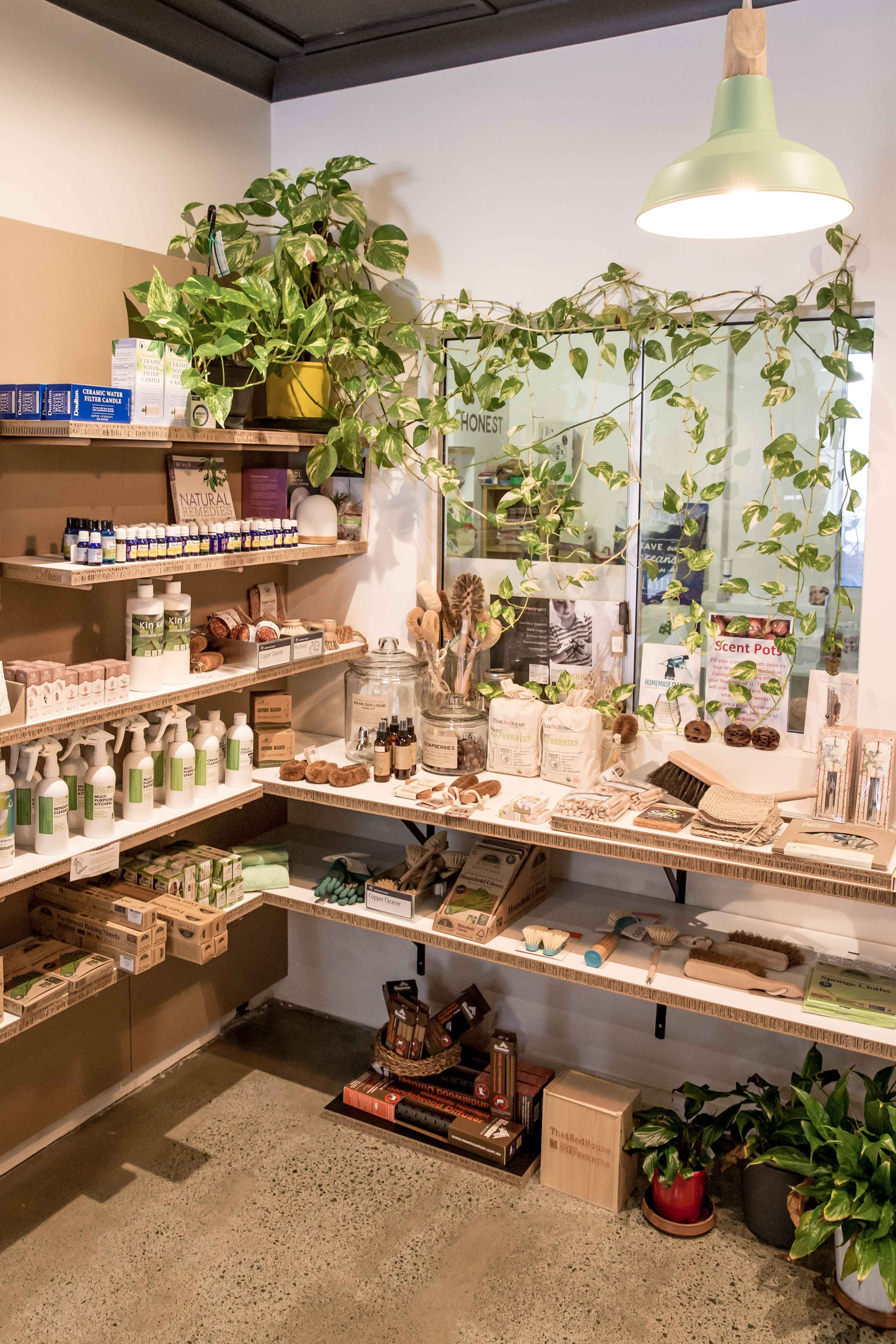 Eco retail store display with plants. Image taken by Kira ...