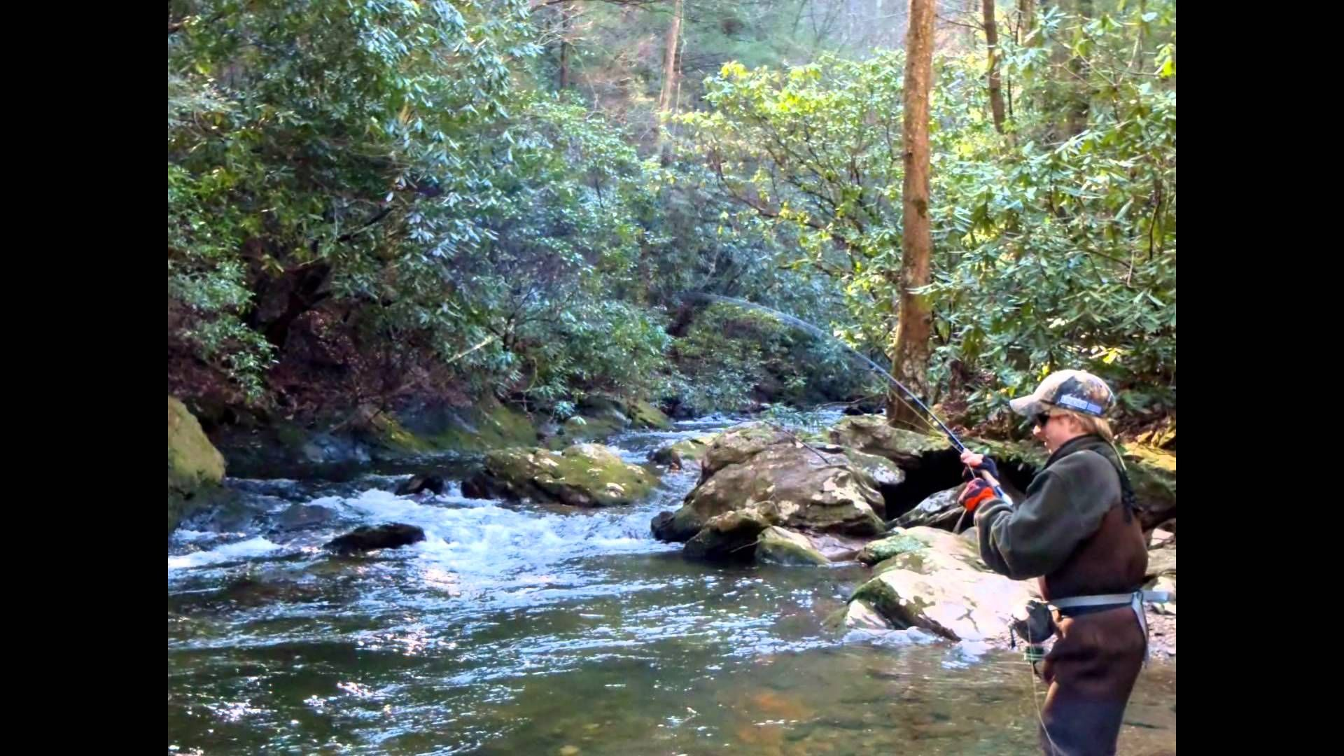 Dukes creek youtube vacation cabin rentals family