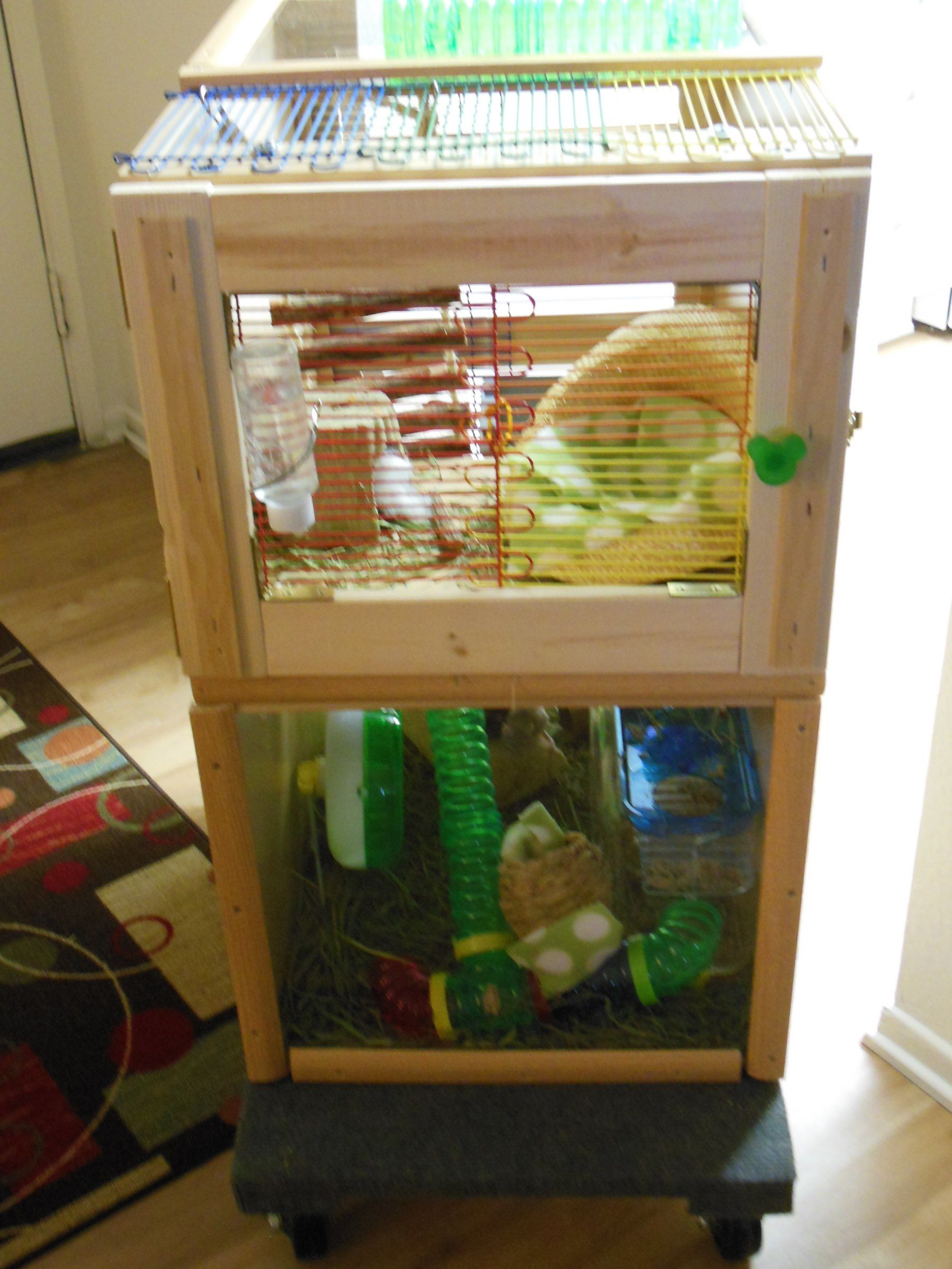 ikea hacked kitchen cabinet makes a great mouse house by meggie