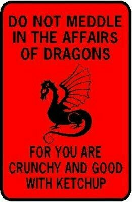 We Have This As A Bumper Sticker On Our Car With Images Dragon