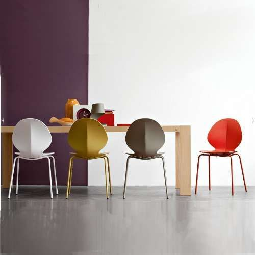 The Colors Of Basil Calligaris Dining Chairs Furniture