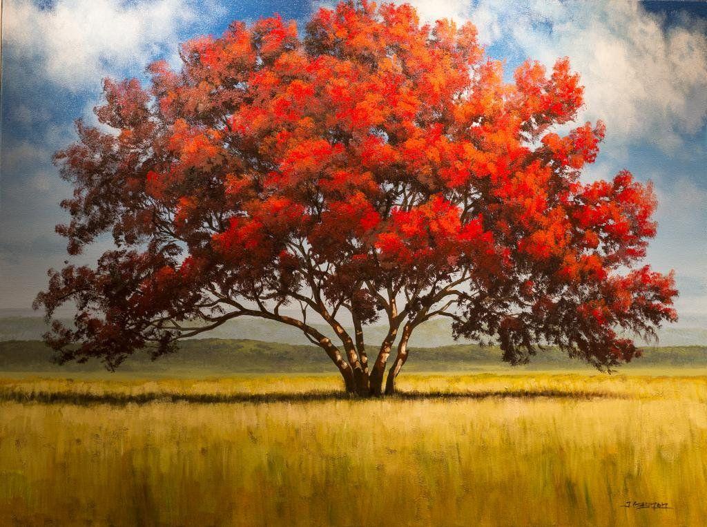 Art Single Red Tree In A Field Acrylic Tim