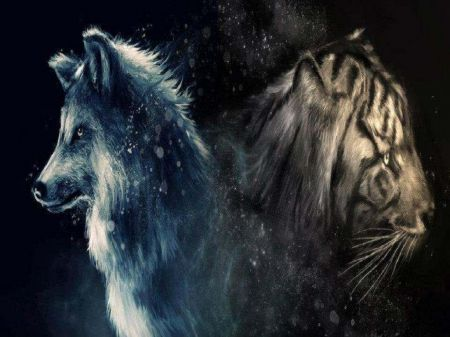 Wolf And Tiger - wolf, abstract, animals, fantasy, tiger