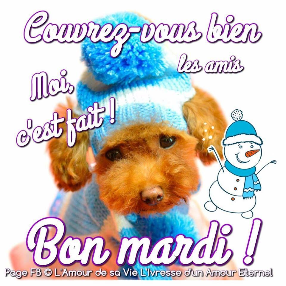 Image Du Tableau Citations De Malika Mankour Bon Mardi Bon
