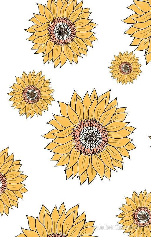 Hand Drawn Sunflowers | Yellow flower pattern iPhone Case & Cover