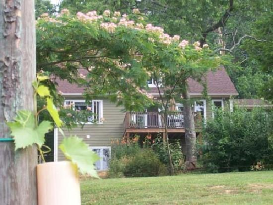 Arcady Inn And Vineyard Charlottesville Wine Tasting Tours Bed And Breakfast Wine Tasting