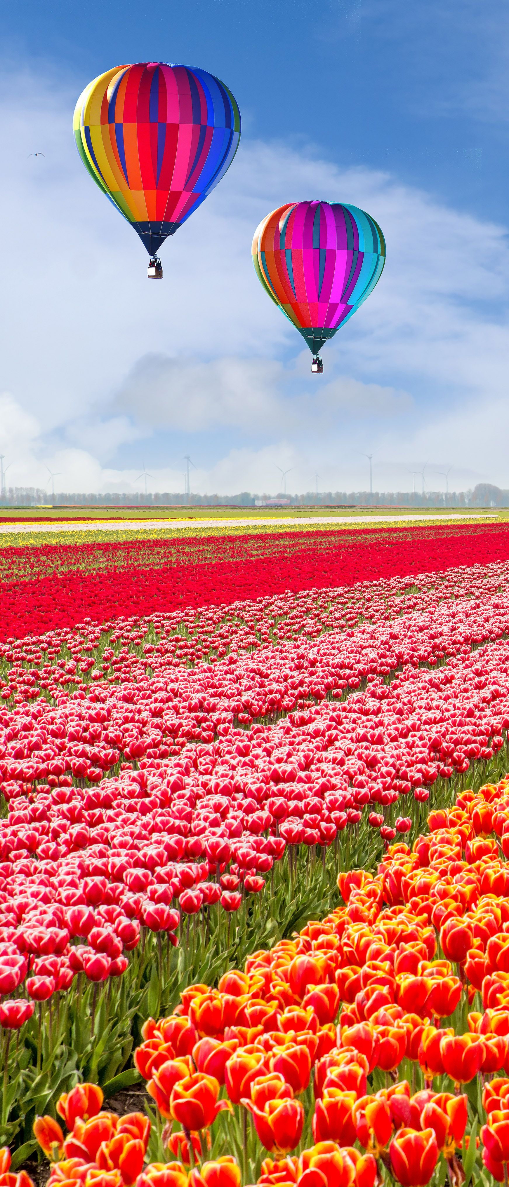 World's 15 Most Beautiful Gardens Hot air balloon