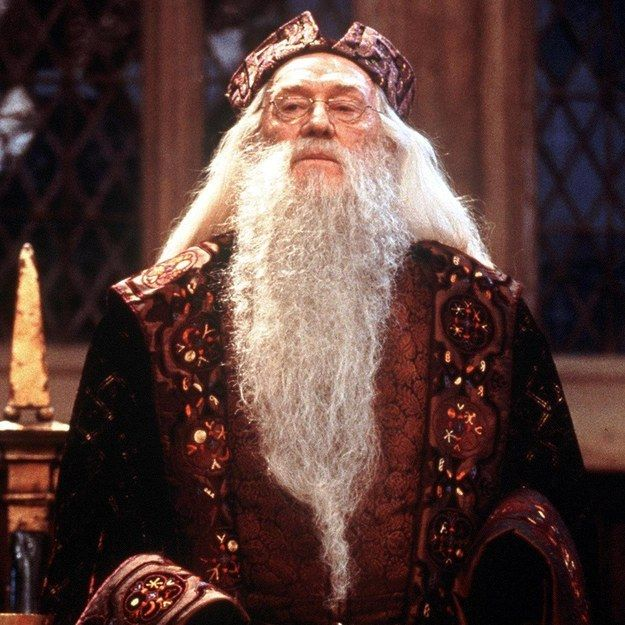 Which Beard From Harry Potter Should You Rock Harry Potter Theories Harry Potter Universal Harry Potter Love