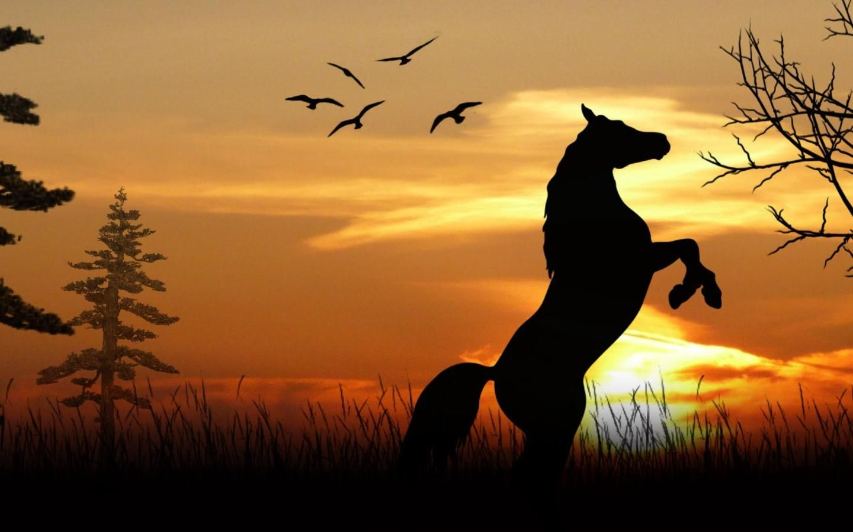 Beautiful Wallpaper Horse Sunrise - b85c2632f9c96c5ad5261214c22e02cc  Pic_834065.jpg