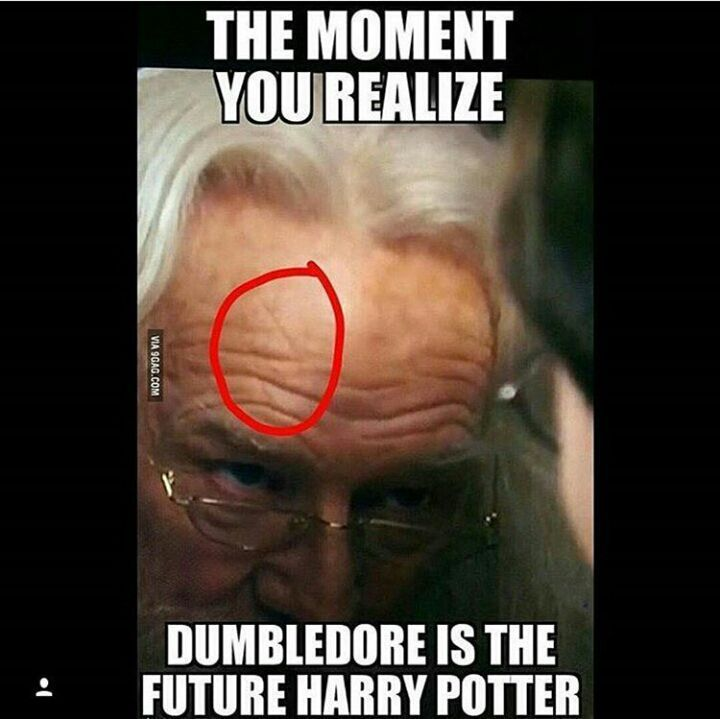 Harry Potter Vans Launch - Really Funny Harry Potter Memes before Harry Potter Broadway London Tickets although Harry Potter Family Tree the Harry Potter House Quiz Complete