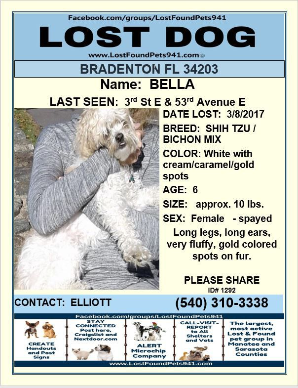 Have You Seen Bella Lostdog Shihtzu Bichon Dog Lost Lostpetservices Bradenton Fl Losing A Dog Service Animal Losing A Pet