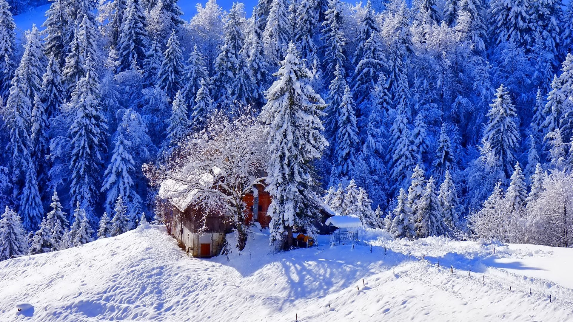 Wallpaper Iphone Winter Beautiful Nature Iphone Wallpaper Winter Beautiful Nature Wallpaper Winter Wallpaper