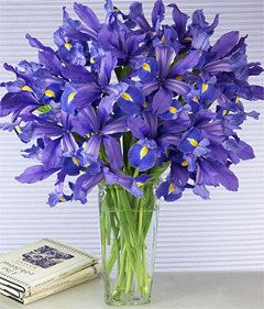 Send Purple Iris Flowers In A Vase 12 Stem Cebu City Philippines Send Iris Flower Cebu City Philippines Florist Iris Flower Shop Cebu City Philippines Iris Flowers Purple Iris Flowers Iris Bouquet
