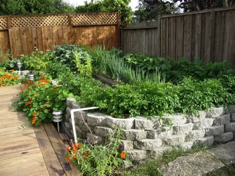 How To Build A Raised Garden Bed #12   Concrete Block Raised Bed .