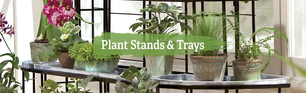 Plant Stands Trays Gardener S Supply Plants Plant Stand