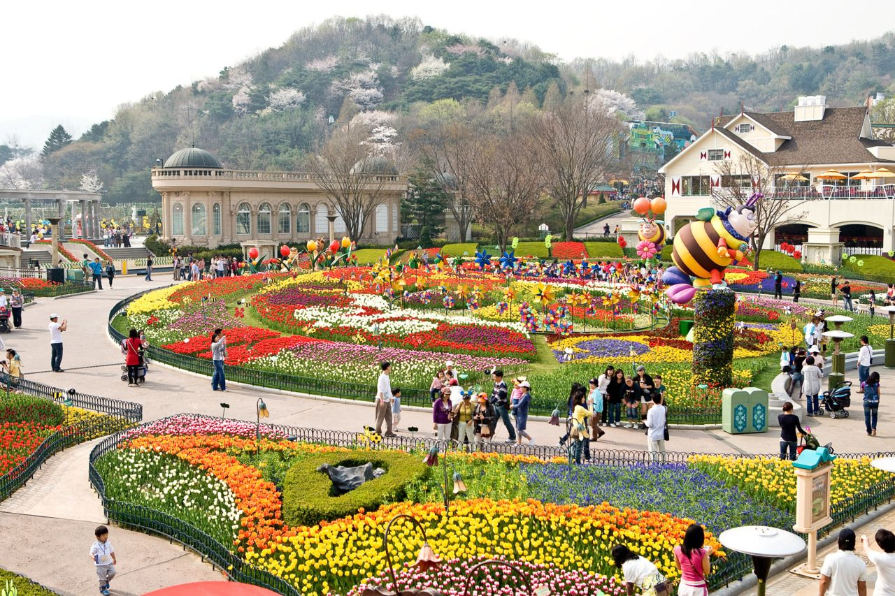 Картинки по запросу everland seoul