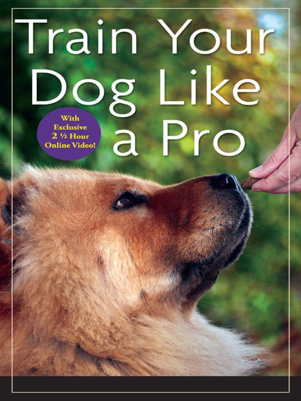Train Your Dog Like A Pro Ebook Training Your Dog Dog