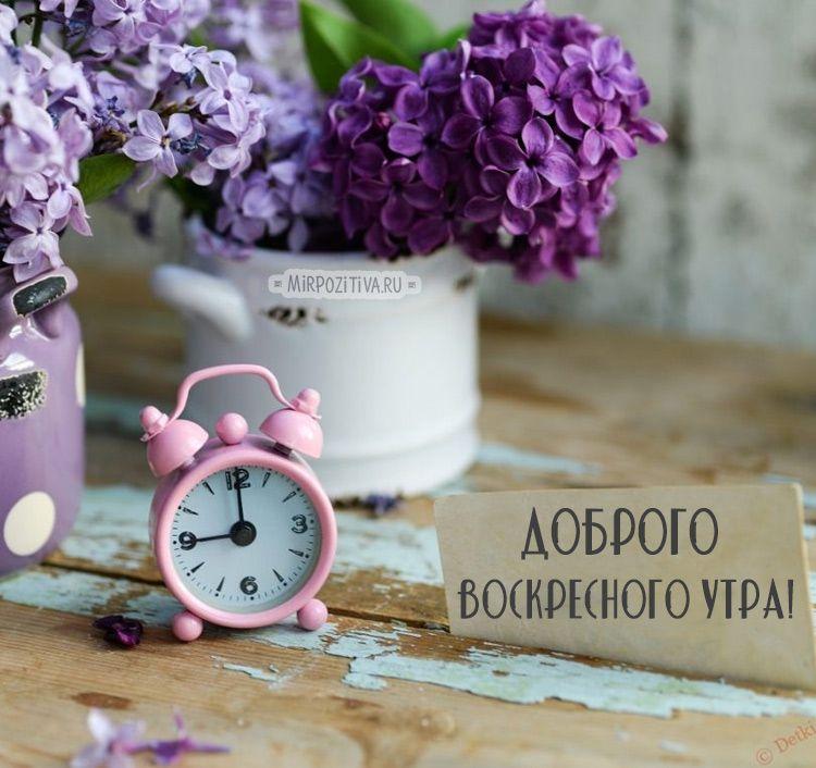 Красивые весенние картинки с добрым утром стильные с надписью