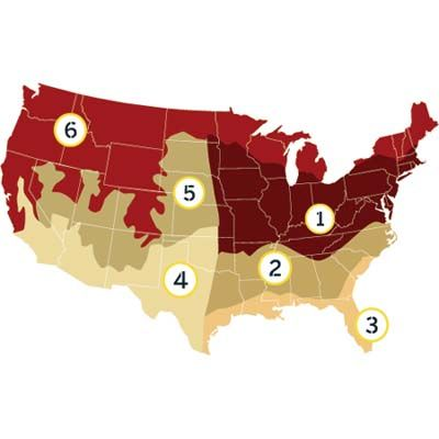 Which type of grass is best for your region? We help you find the types adapted to your local climate and soil conditions. | thisoldhouse.com