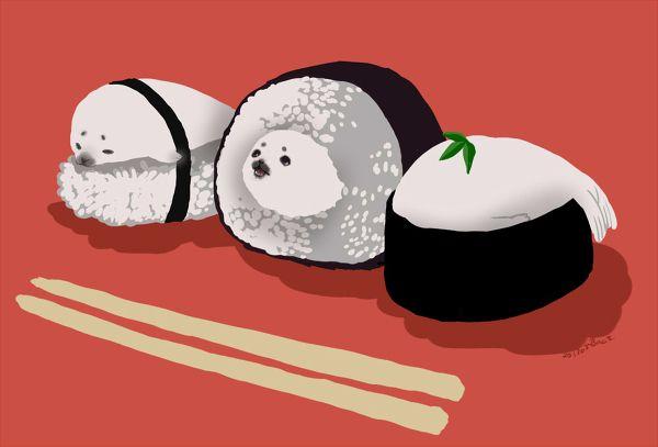 Shushi Harp Seals Food Illustrations Kawaii Anime Images