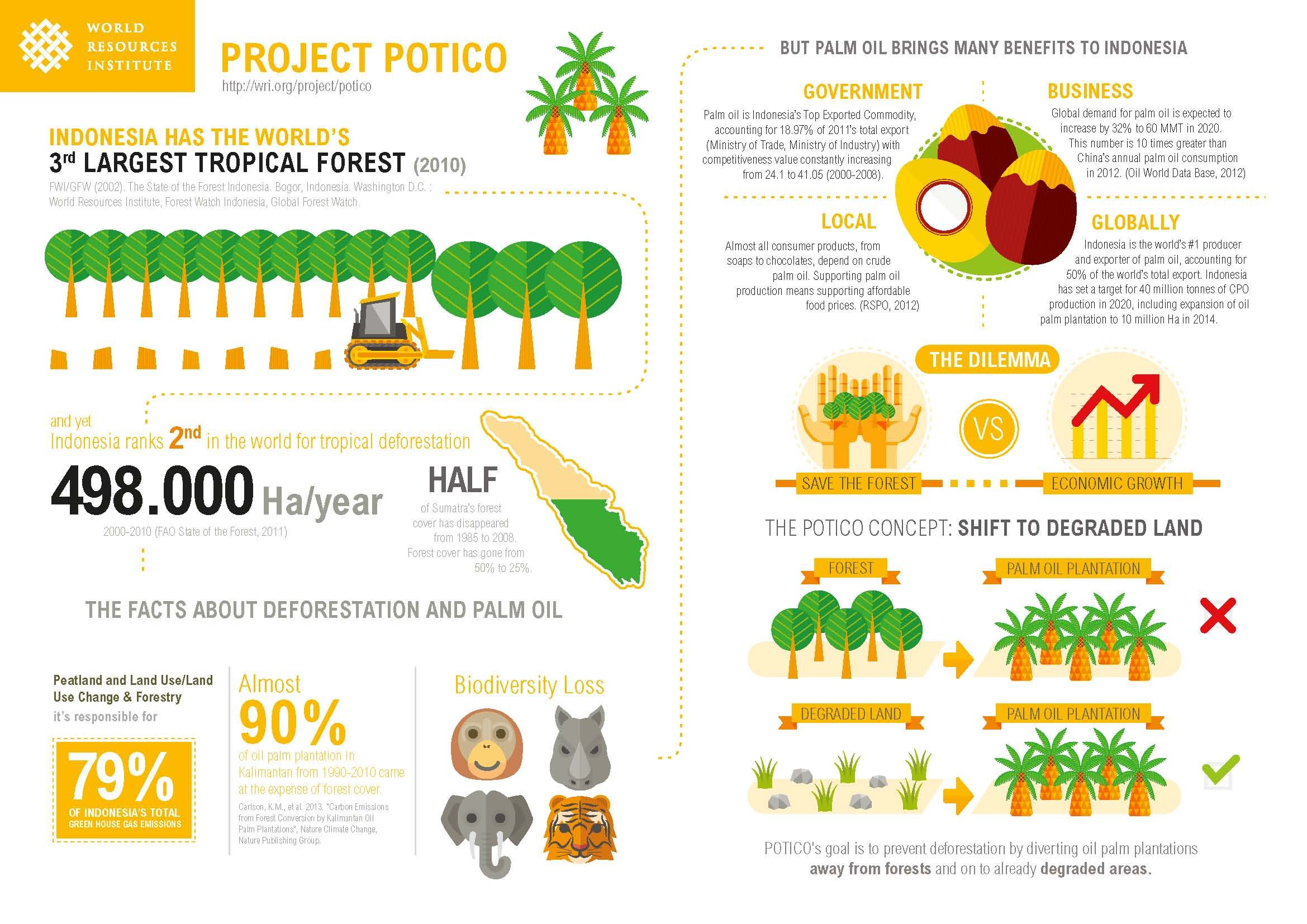 Pin By M S On Infographics Palm Oil Palm Oil Infographic