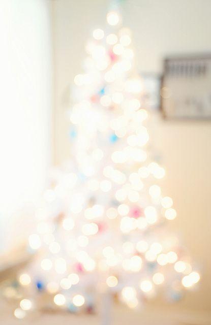 You\u0027d think I would have a white Christmas tree wouldn\u0027t you