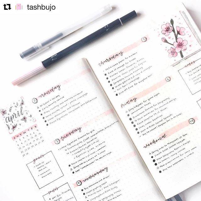 Weekly Bullet Journaling Spreads to Keep Every Week Organized · Homebody