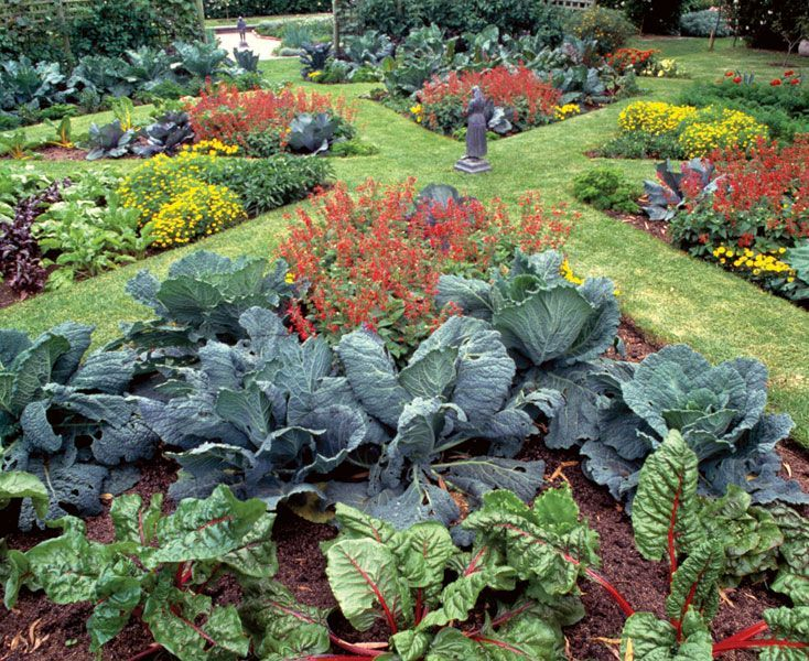 Who says a kitchen garden can't be beautiful? Turn edible plantings Garden Design Strategy on design thinking, design business, design games online, design idea, design branding, design philosophy, design coordination, design ethics, design education, design science, design design, design calculation, design process, design skills, design classics, design innovation, design creative, design card, design scheme, design structure,