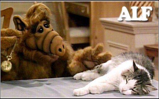 Katze Von Alf