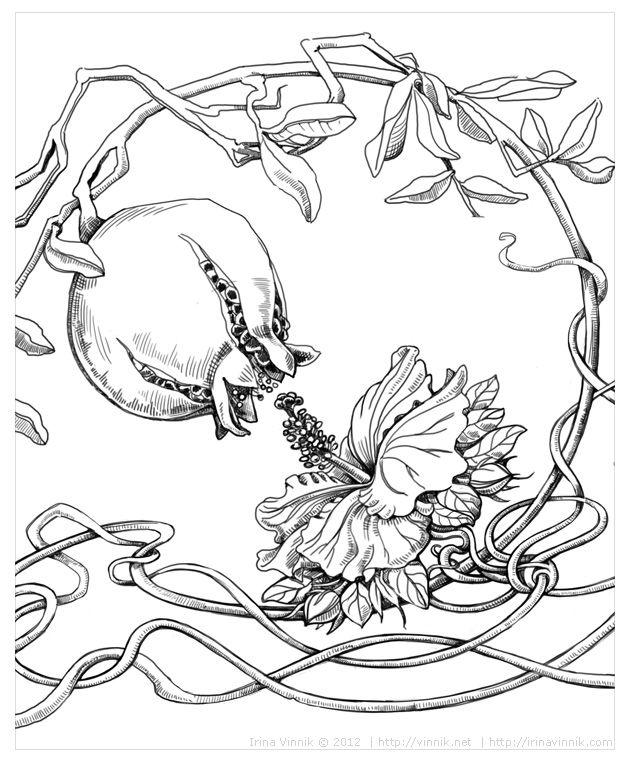 Iz Neprinyatogo Raskraski Botanicheskie Illyustracii I Konturnye Risunki
