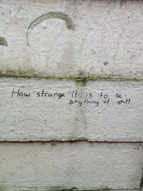 How Strange It Is To Be Anything At All And So It Is Written