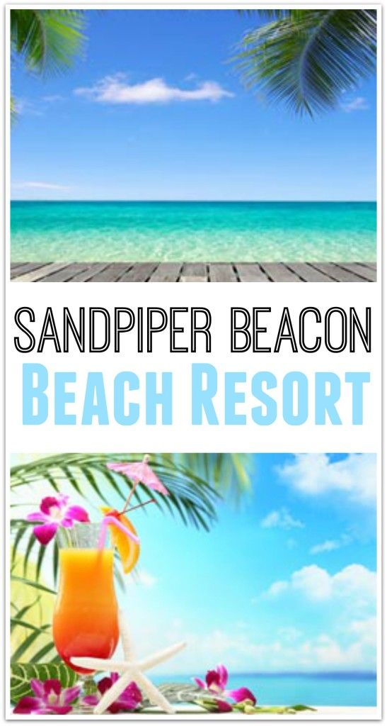 10 Reasons To Stay At Sandpiper Beacon Beach Resort In