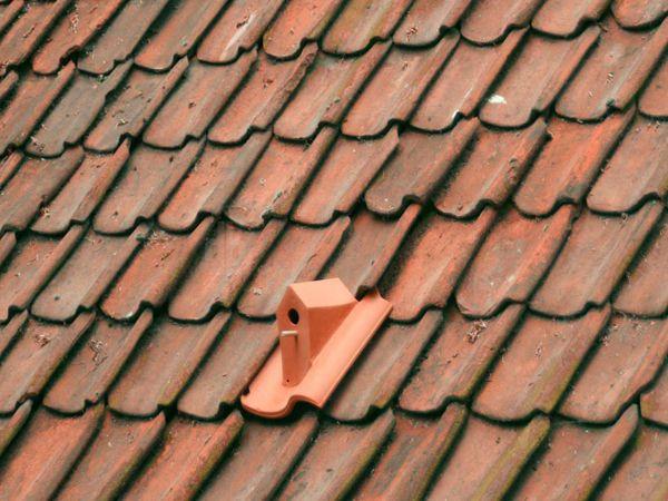 birdhouse-roof