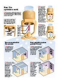 How Fire Sprinklers Work Fire Sprinkler System Fire Sprinkler