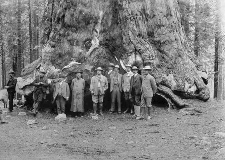 Yosemite 1903
