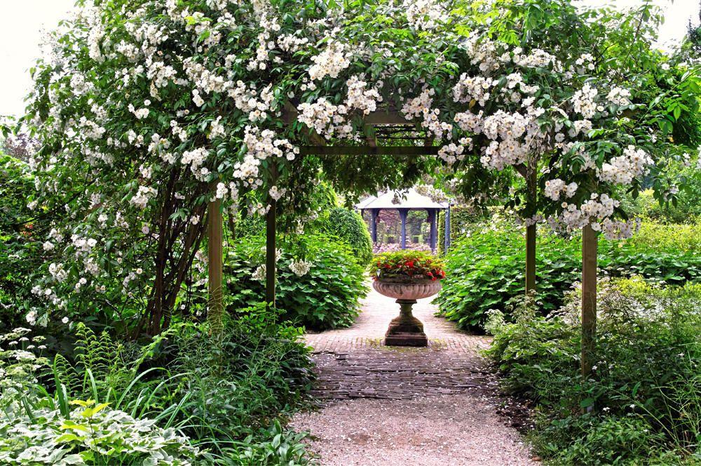 Kletterbogen Für Pflanzen : Ramblerrosen traumgarten pinterest hauswand pergola und geschafft