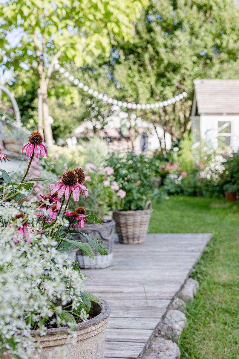 Der Geheime Garten Wie Verlangere Ich Den Sommer Pomponetti In 2020 Garten Geheimer Garten Geheime Garten