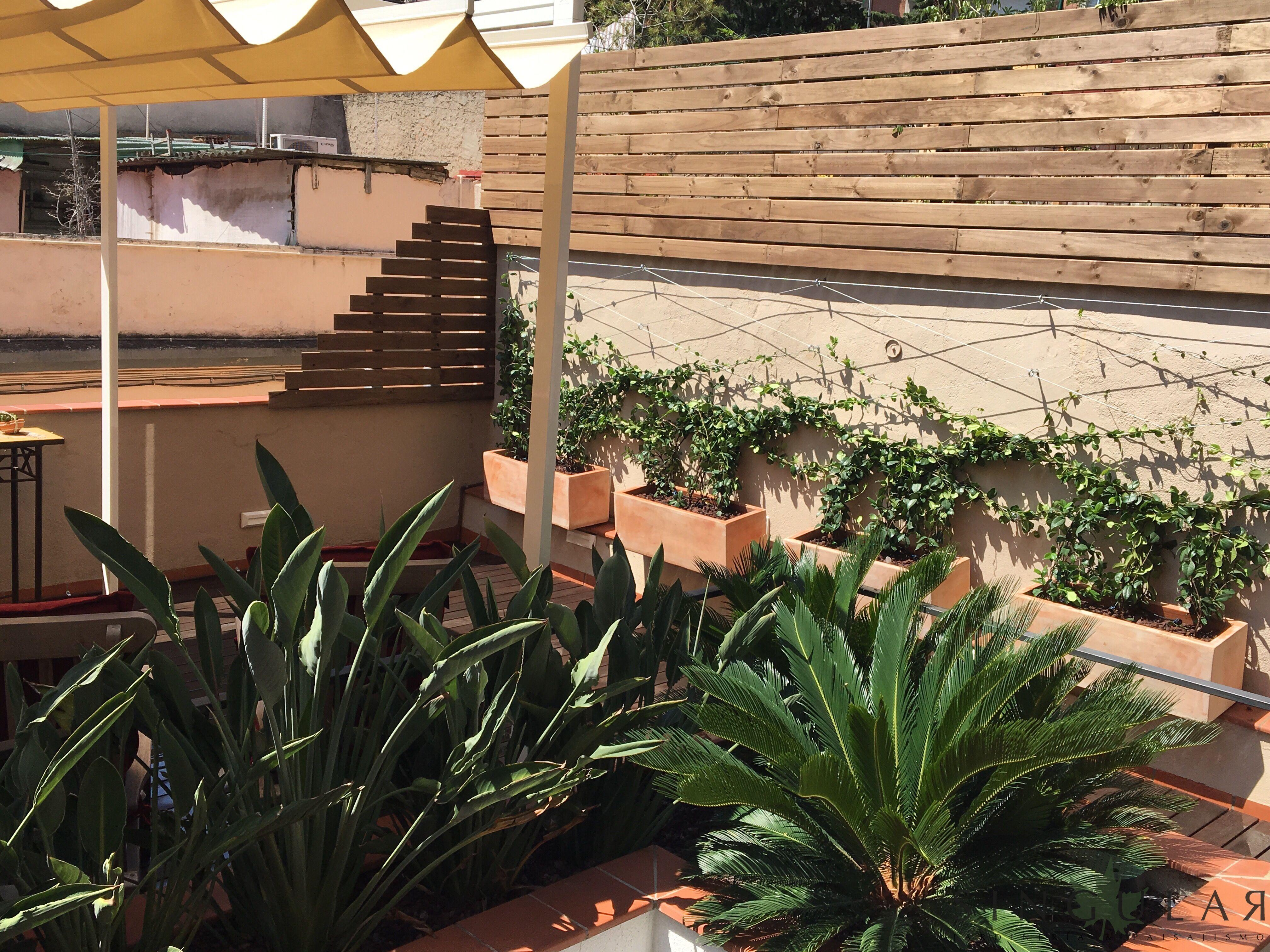 Un Oasis En El Centro De Barcelona En Esta 2ª Actuación