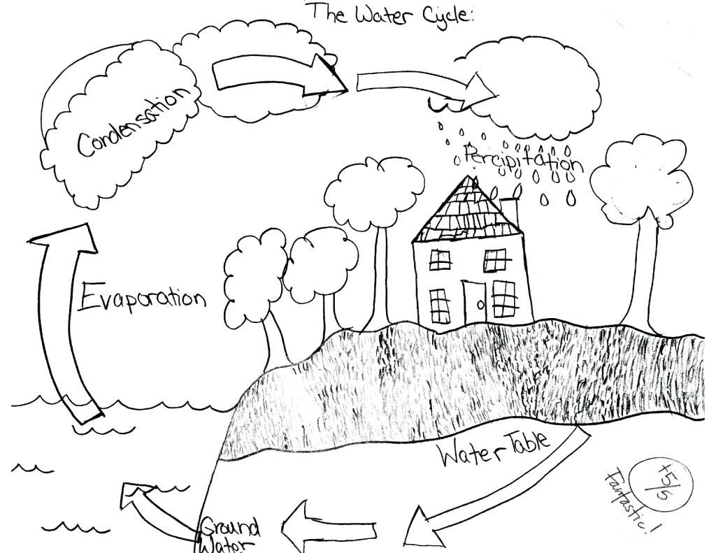 36 Simple Water Cycle Worksheet Ideas S