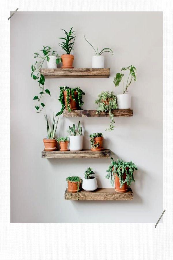 Décorer avec des plantes – MissZaStyle – Blog déco