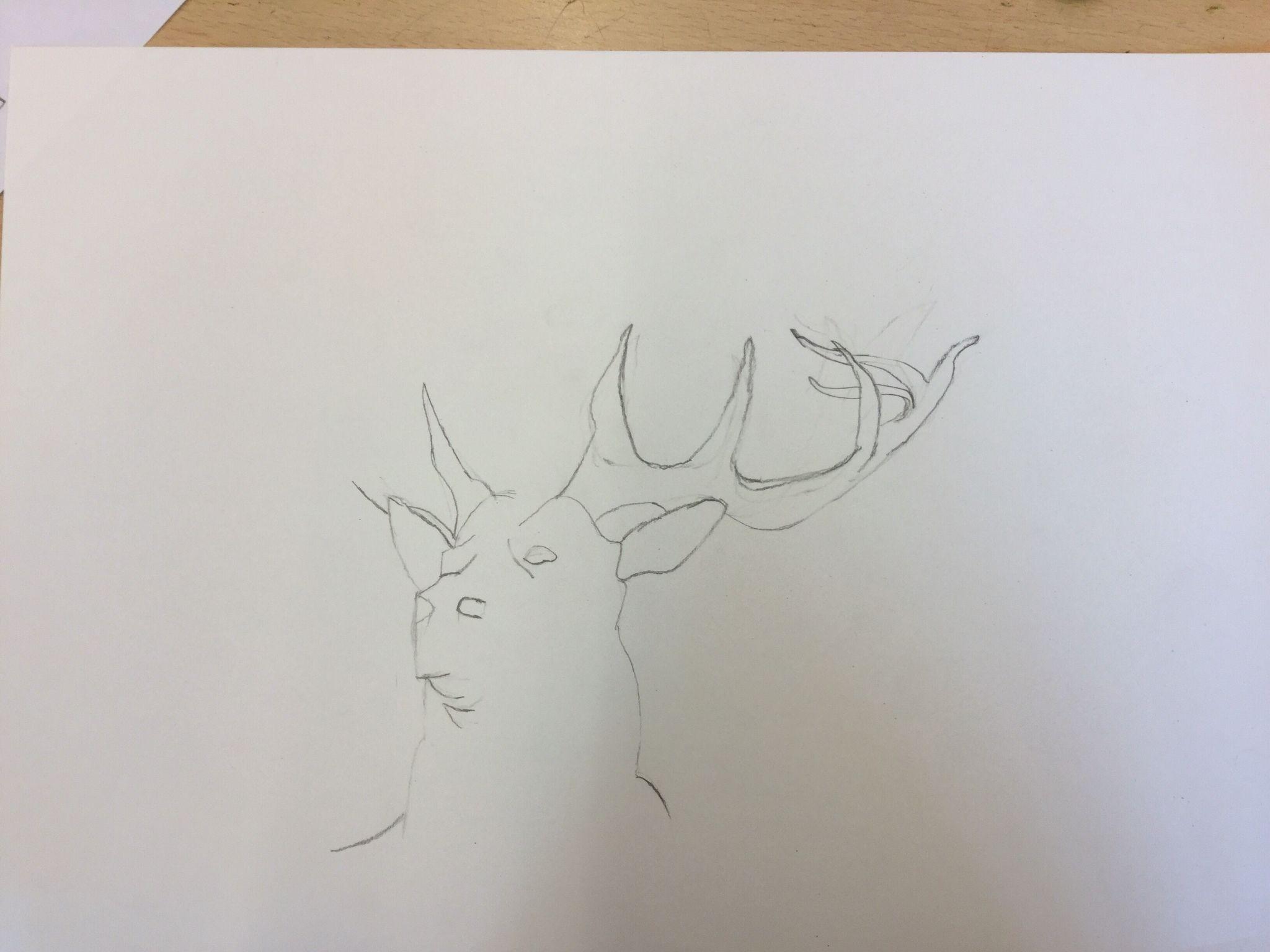 Dit is mijn eind tekening tot nu toe ik vond het gewei het moeilijkst hij lukt beter als de eerste