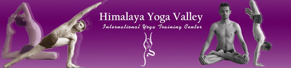 Himalaya Yoga Valley teacher training. Simply love Lalit Kumar and his crew. They are the best.