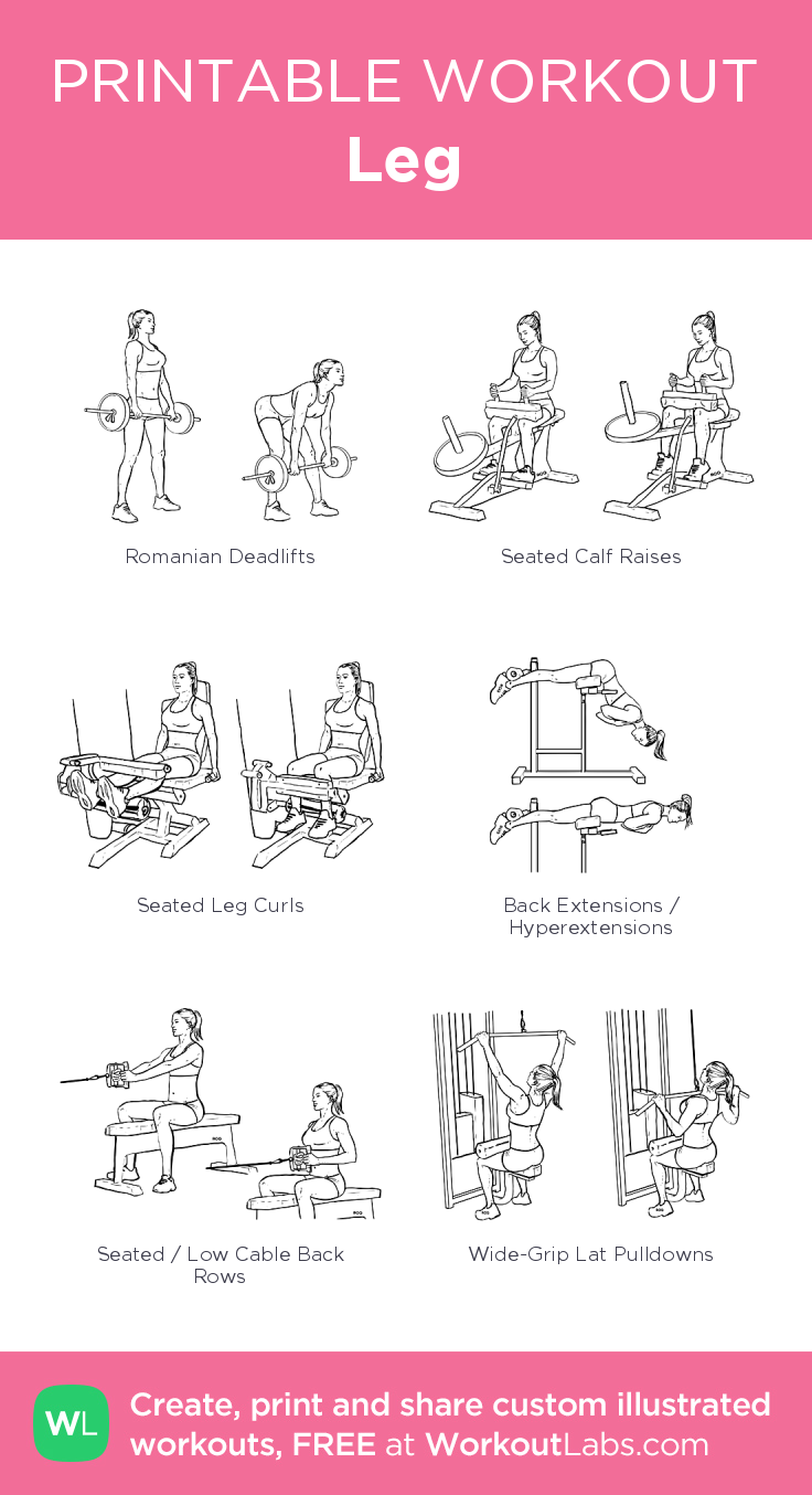 Leg – illustrated exercise plan created at WorkoutLabs com