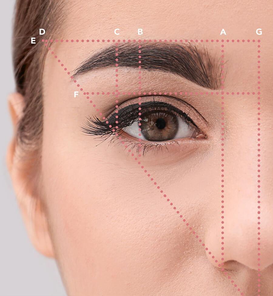 Eyebrow Brush The Secret To Eyebrow Shaping Best Eyebrow
