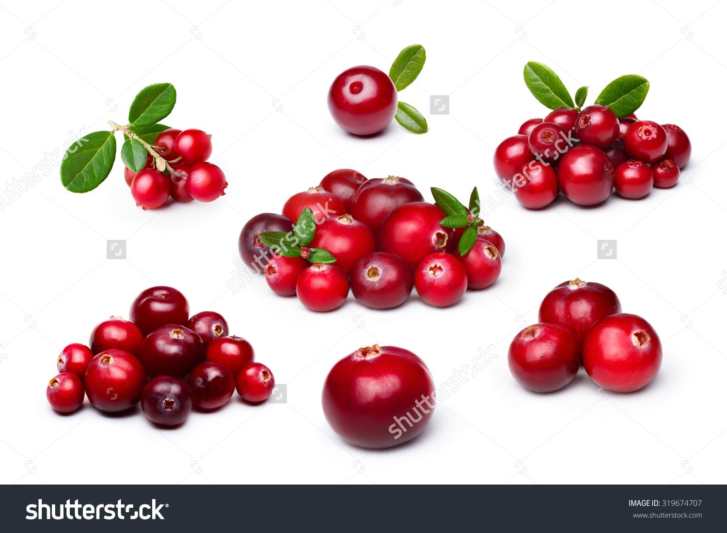 How useful cowberry for our body