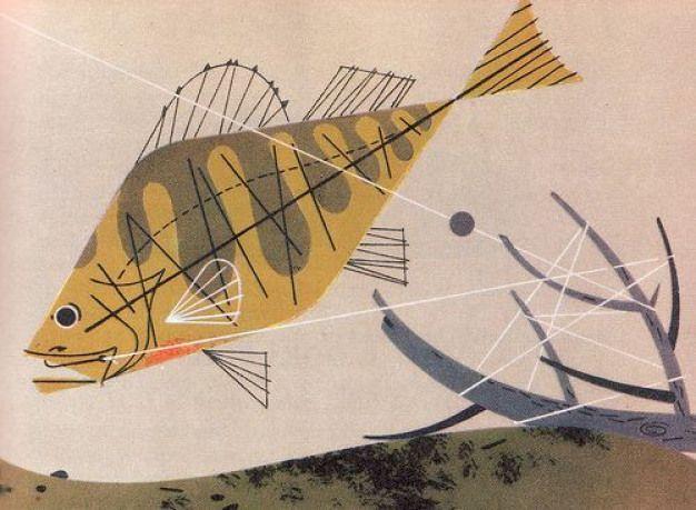 Photo of Charley Harper (Illustration) # Freizeitraum # Freizeitraum # Wand # Kunst # …, # Kunst # C …