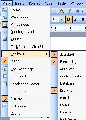 View Menu In Ms Word 2003 Microsoft Office Word Office Word Ms Word 2003