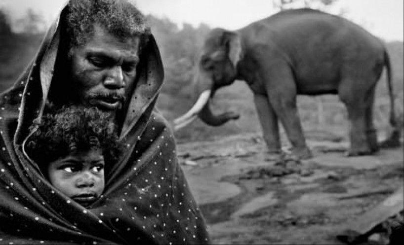 Image result for Palani Mohan portfolio