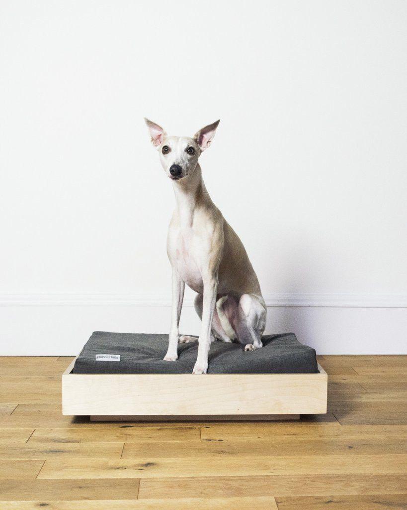Modern Dog Beds From Hund Haus Dog Beds Homemade Dog Bed