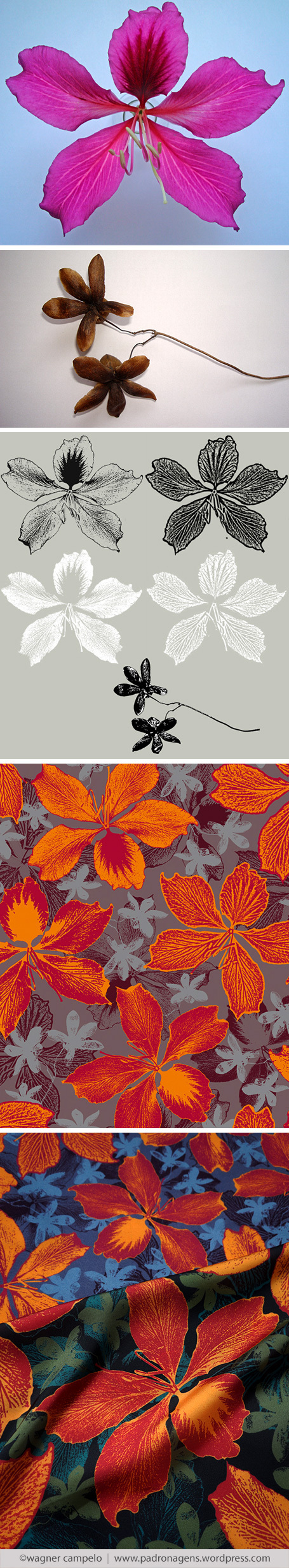 Creative process for prints from photos | Avatar Flowers pattern.